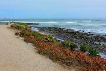 Yzerfontein, Cape West Coast